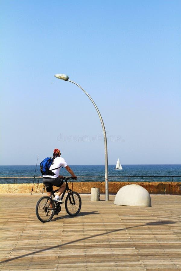 Tel Aviv portpromenad, stads- tr?ddesign arkivfoton