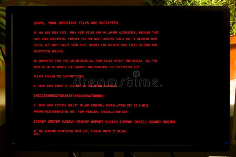 A tela do monitor do computador é contaminada com o vírus Petya A foto de stock royalty free