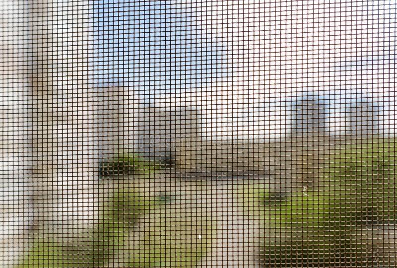 Tela do mosquito em uma janela imagem de stock royalty free