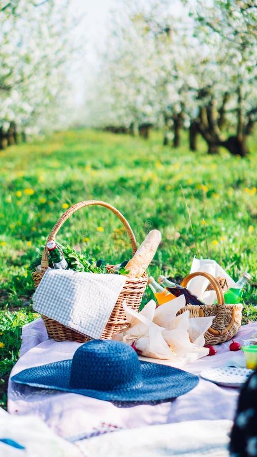 Tela escocesa, jugo y una cesta para una comida campestre, debajo de un sol caliente fotografía de archivo libre de regalías