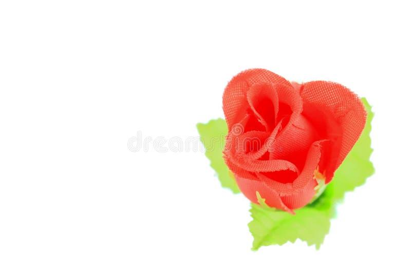Tela roja de Rose en el fondo blanco fotos de archivo libres de regalías