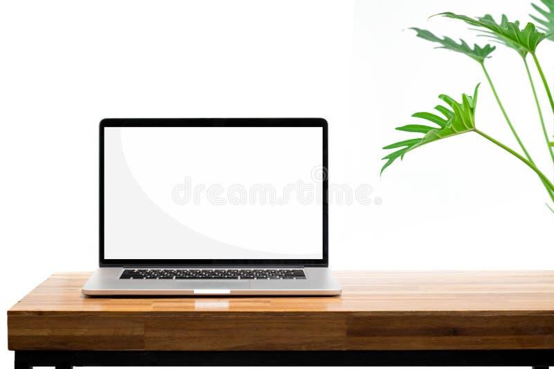 Tela vazia do portátil na planta verde da mesa de madeira no fundo branco foto de stock