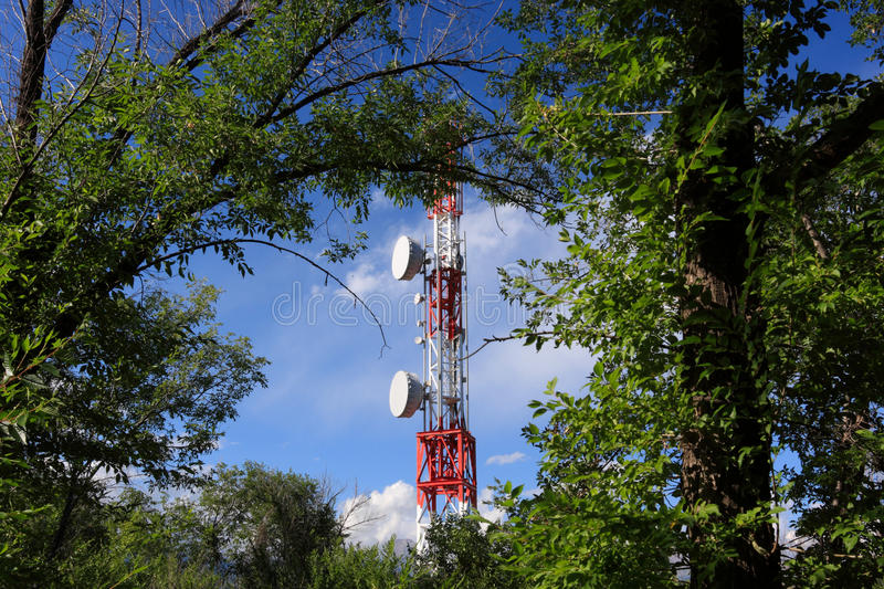 Telecom mast in forest royalty free stock photography