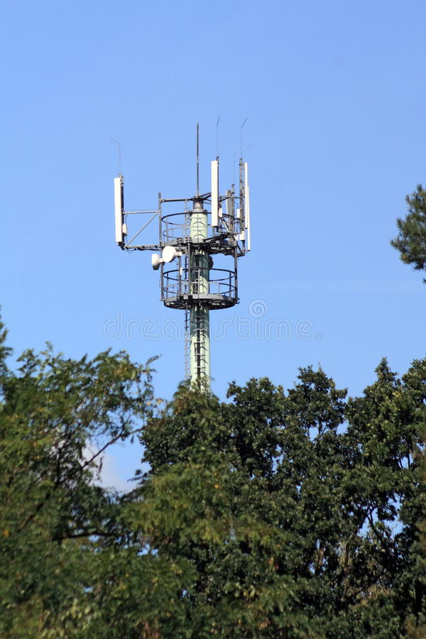 Telecommunication mast. In the middle of forest royalty free stock photography