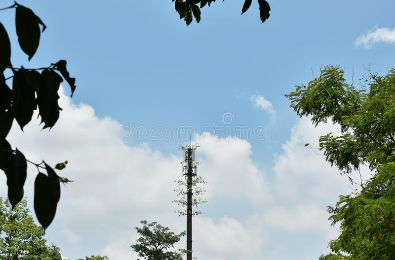 Telecommunication pole with plant growth on cloud and sky background. Telecommunication pole with plant growth on the cloud and sky background stock photography