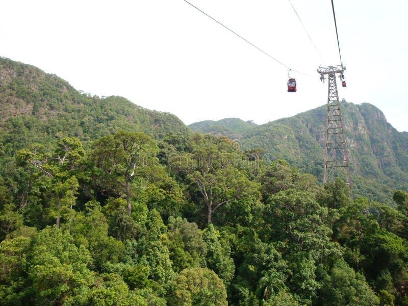 Teleférico acima da selva imagens de stock