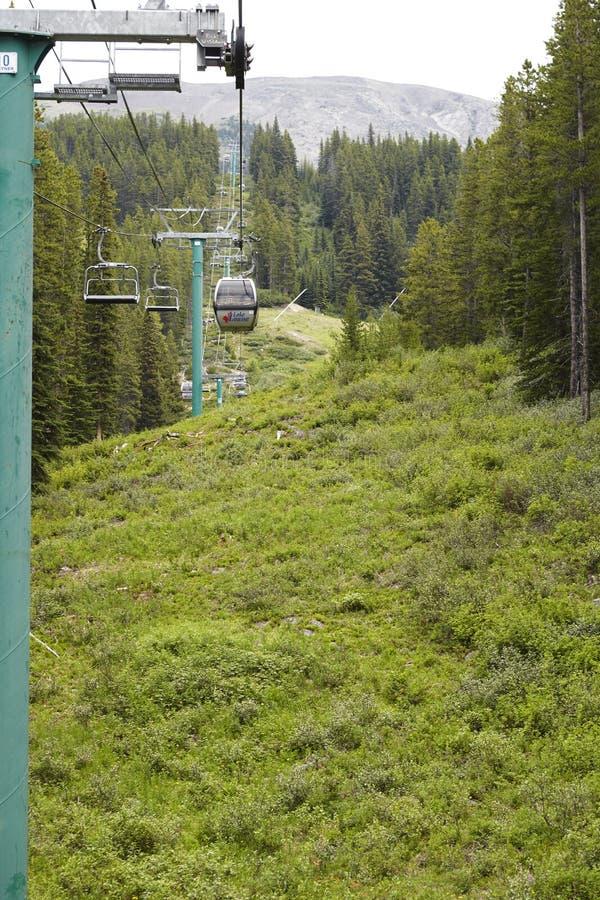 Teleférico sobre el valle boscoso en Alaska imágenes de archivo libres de regalías