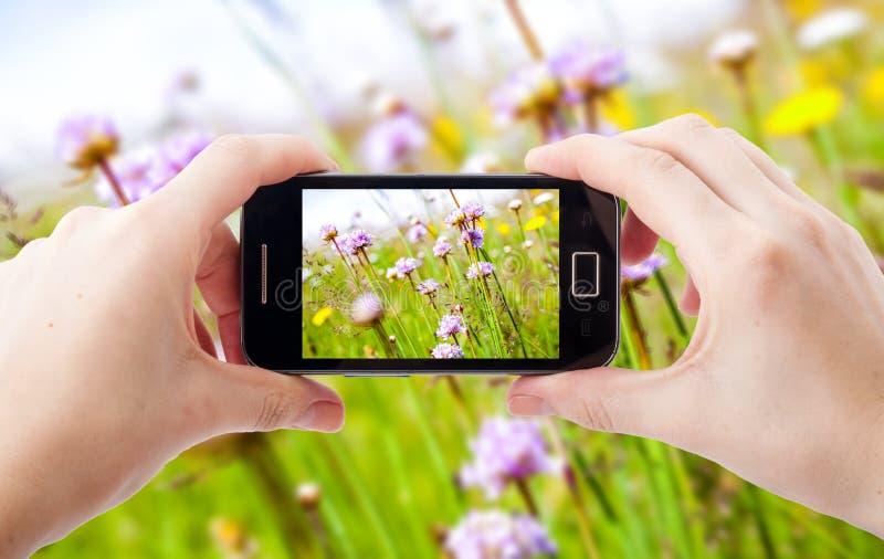 Telefon komórkowy fotografia zdjęcie royalty free