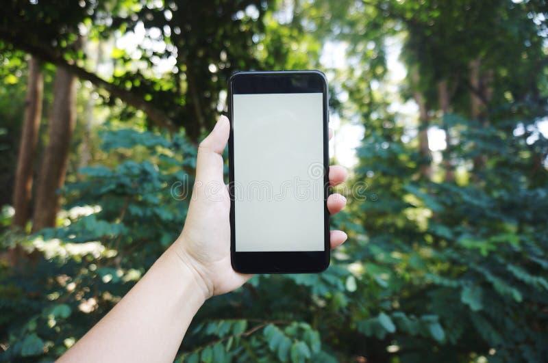 Telefono, comunicazione, online fotografia stock