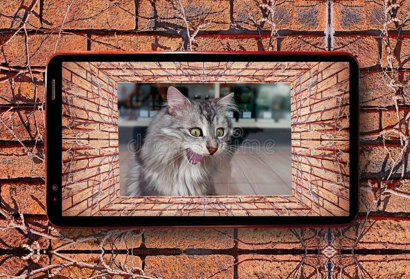 Telefonu komórkowego 3D widok stary tunel z ścianą z cegieł, suchym bluszczem i szalonym kotem poza sklepu okno, ja obrazy royalty free