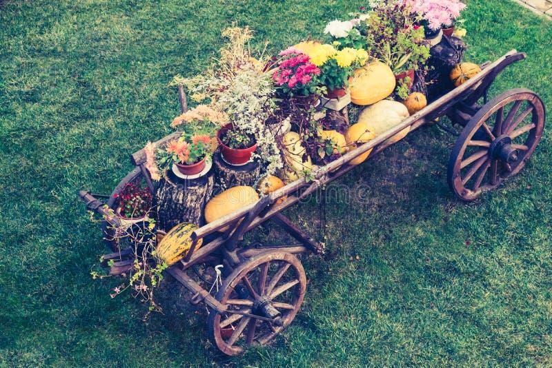 Telega ucraino su un prato inglese fotografie stock libere da diritti