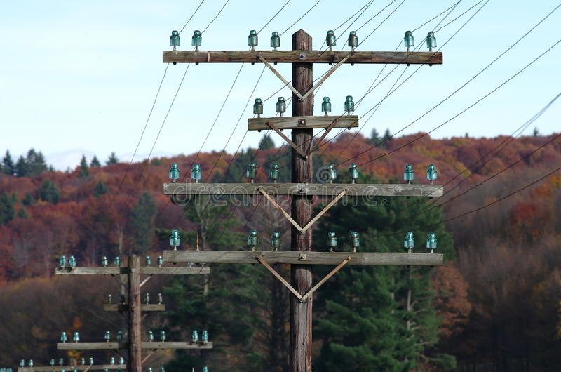 Telegraph poles. Line of telegraph poles across the forest area stock images