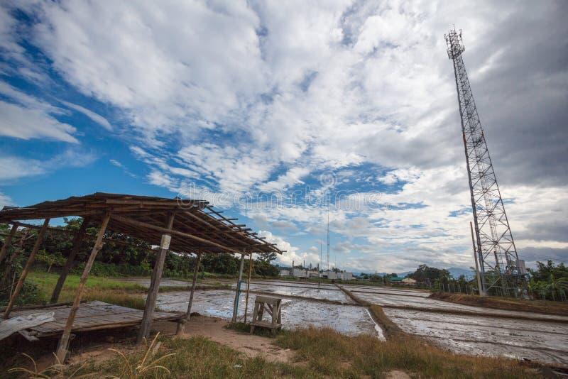 Telekomunikacyjny komórkowy słup stacyjny i komunikacyjna dane linia Pusta z ryż fabryką i polami zdjęcia stock