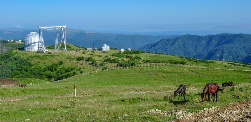Telescoop in de bergen van de Kaukasus In de voorgrondpaarden die gras weiden royalty-vrije stock foto