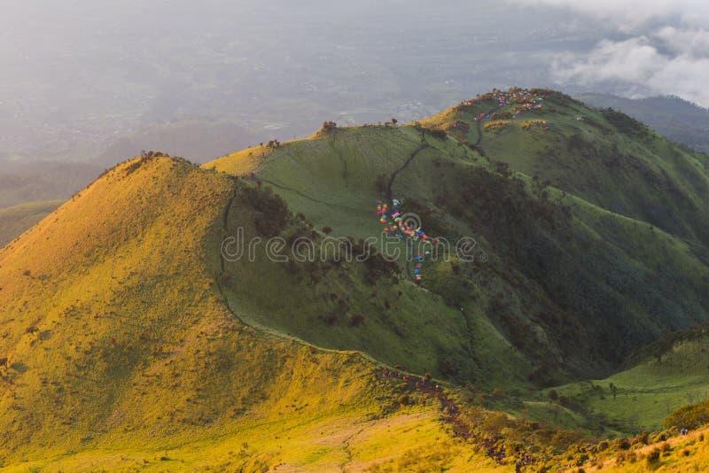 teletubbies小山的秀丽在默巴布火山的早晨 库存照片