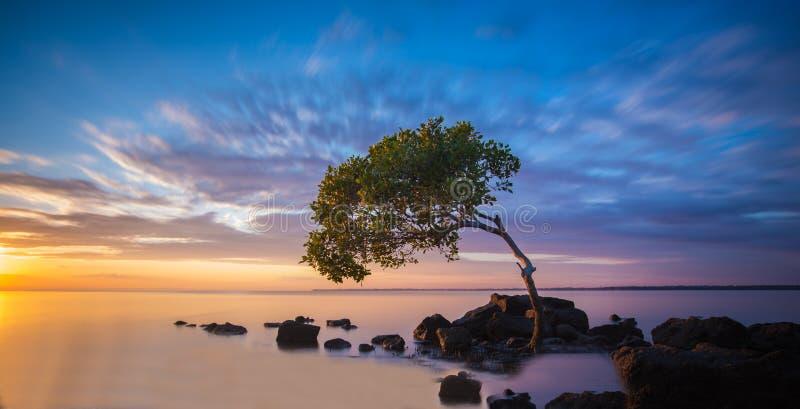 Teleurstellingsbaai, Queensland stock afbeelding