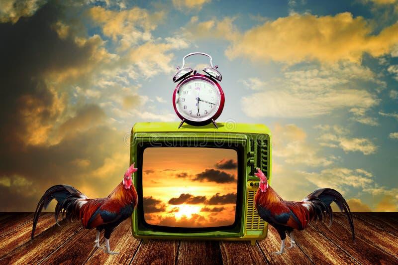 Televisão retro com despertador e galinhas na plataforma, programa de televisão na manhã fotografia de stock