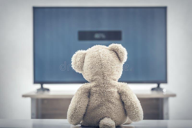 Televisión de observación del oso de peluche imágenes de archivo libres de regalías