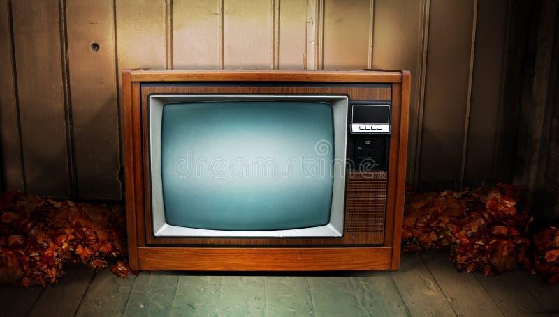 Download Televison stock image. Image of creepy, vintage, seasonal - 16238743