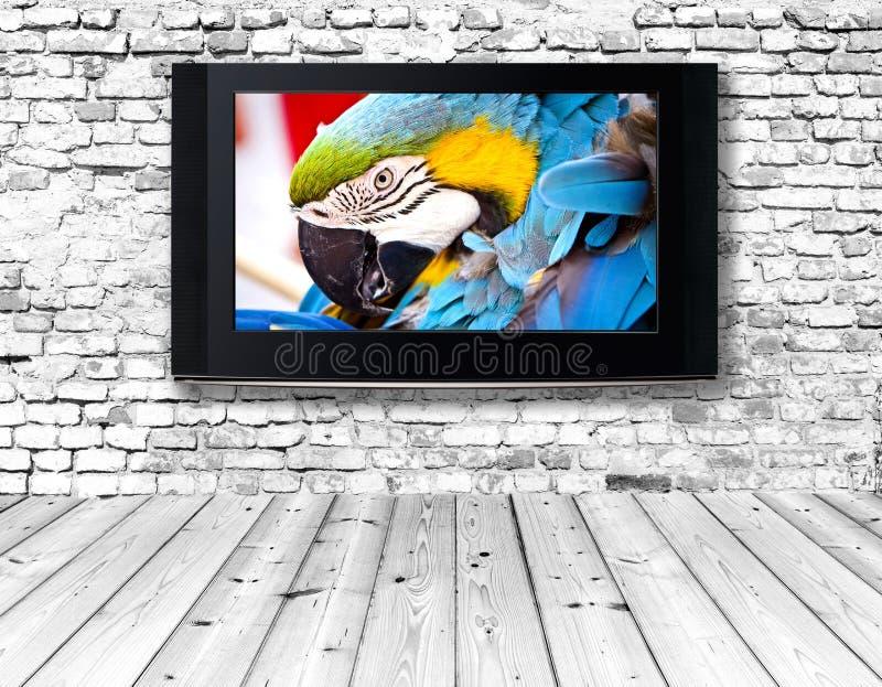 Televisore su una vecchia parete fotografia stock libera da diritti