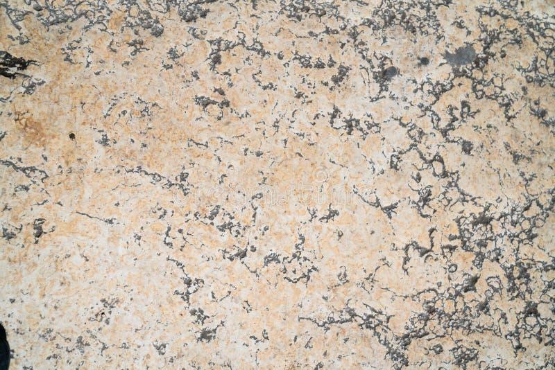 Telha do passeio, a textura do passeio no Temple Mount no Jerusalém imagens de stock