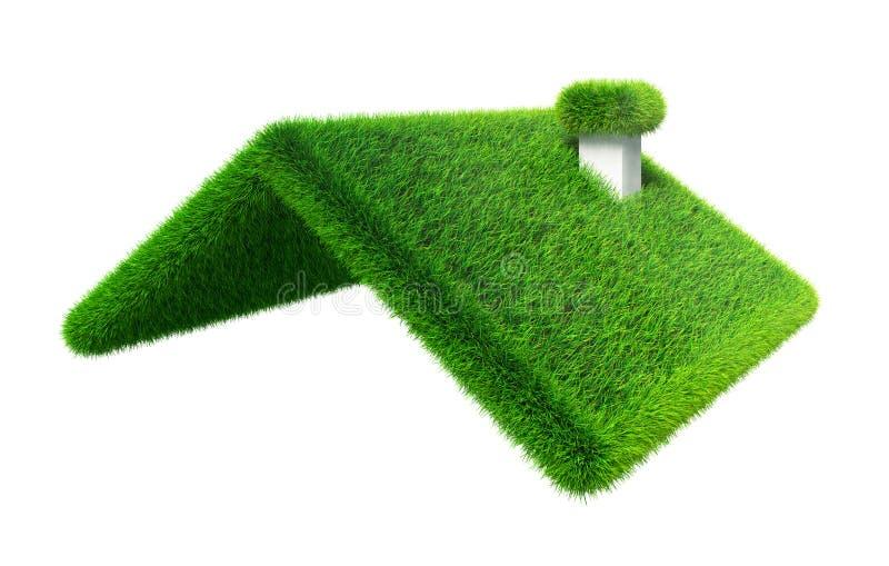 Telhado da casa da grama verde ilustração royalty free