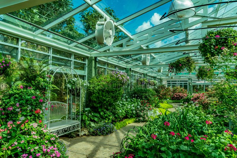 Telhado da casa verde fotos de stock royalty free