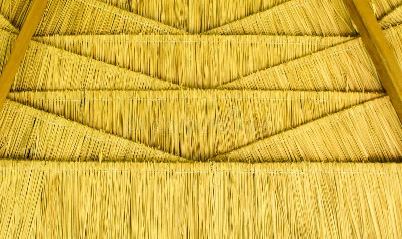 Telhado da tradição na casa tailandesa antiga feita do Rattan da luz - marrom seque as folhas na forma sem emenda do triângulo do fotografia de stock