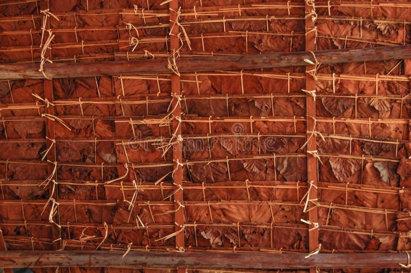 Telhado de bambu fotografia de stock