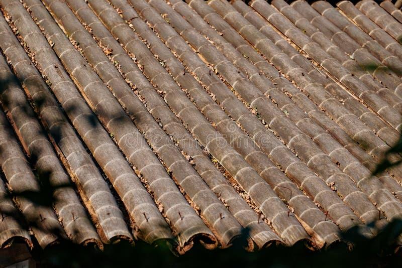 Telhado de bambu velho em uma floresta foto de stock royalty free