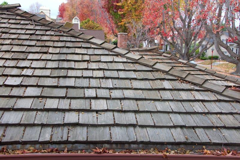 Telhado de madeira da telha com os guttters obstruídos da chuva, folhas de outono em árvores no fundo fotos de stock royalty free