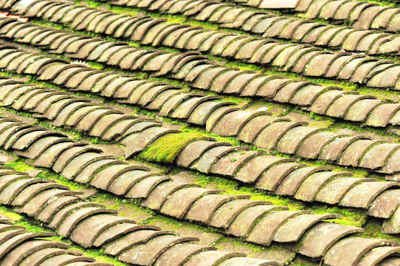 Telhado de telha com musgo foto de stock royalty free