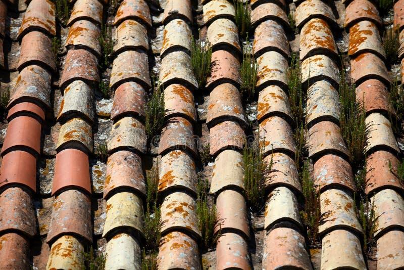 Telhado de telha gramíneo imagem de stock royalty free