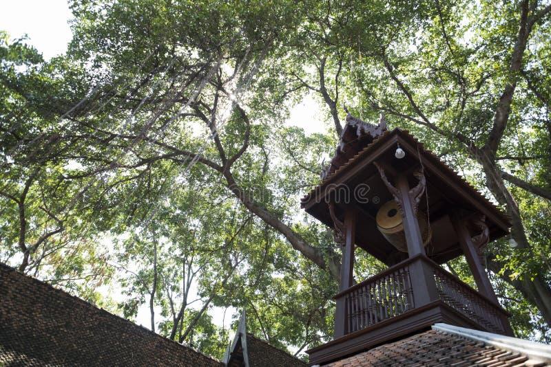 Telhado e cilindro de madeira antigos no pavilhão com árvore como um fundo fotografia de stock