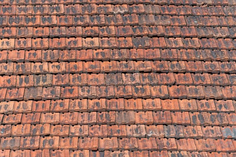 Telhado ou telha vermelha Muito populat em Lituânia, Vilnius Velho, Uniqu imagem de stock