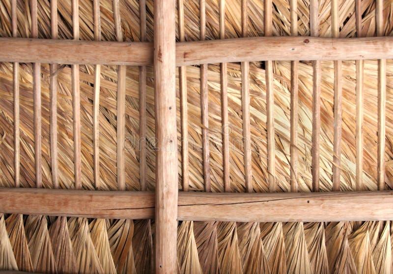 Telhado Thatched - para dentro foto de stock
