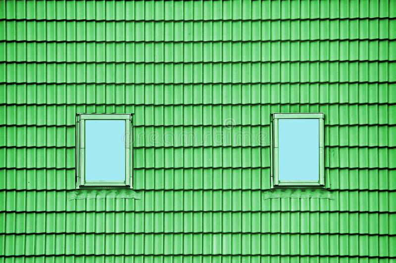 Telhado verde com clarabóias foto de stock royalty free