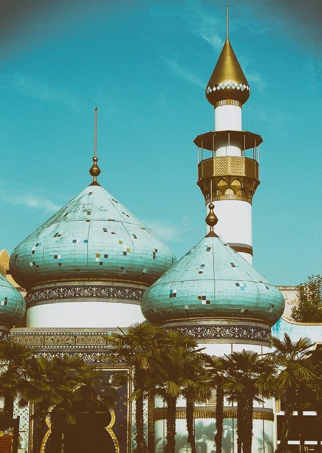 Telhados árabes em Tunísia imagens de stock royalty free