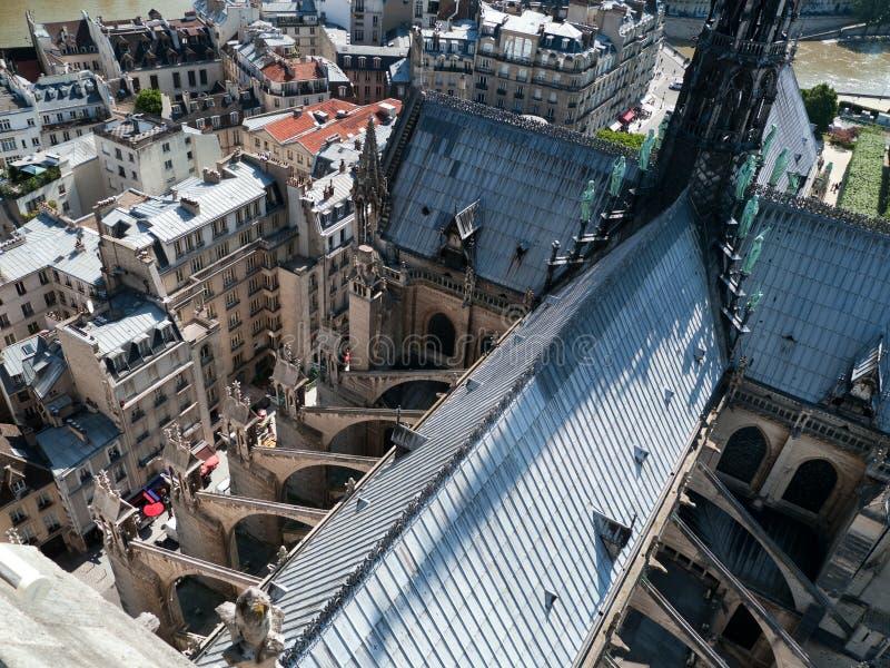 Telhados de Paris da torre da catedral de Notre Dame foto de stock royalty free