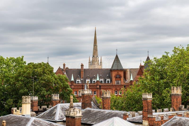 Telhados e arpão da catedral de Norwich foto de stock royalty free
