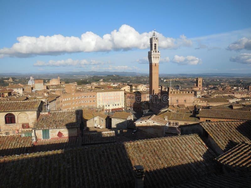 Telhados e torre, Siena, Itália fotografia de stock royalty free
