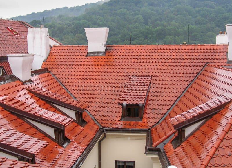Telhados telhados vermelhos bonitos sob a chuva na cidade velha de Praga fotos de stock royalty free