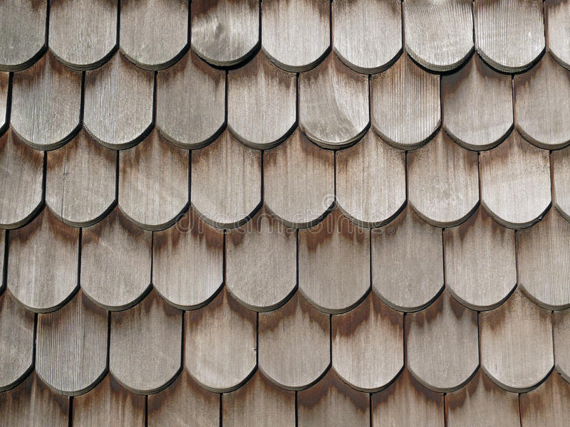 Telhas de telhado da cauda do castor foto de stock