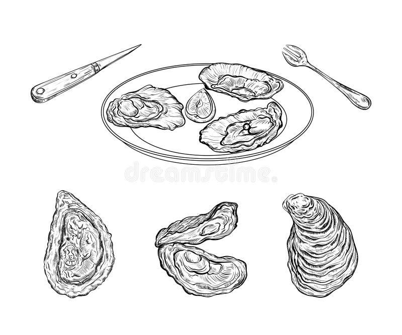 Teller mit Austern und Tischbesteck Gravierte Art Getrennt auf weißem Hintergrund lizenzfreie abbildung