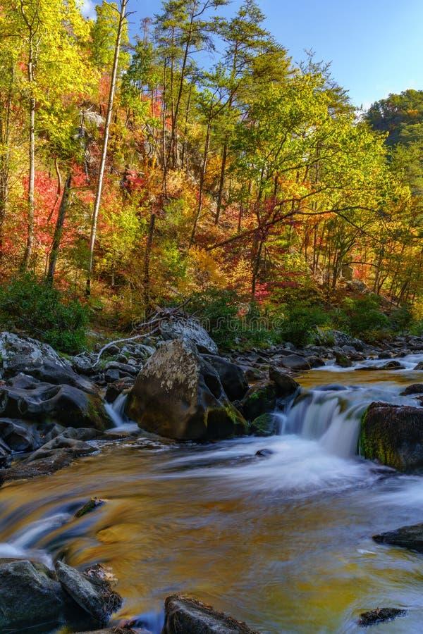 Tellico rzeka obrazy stock