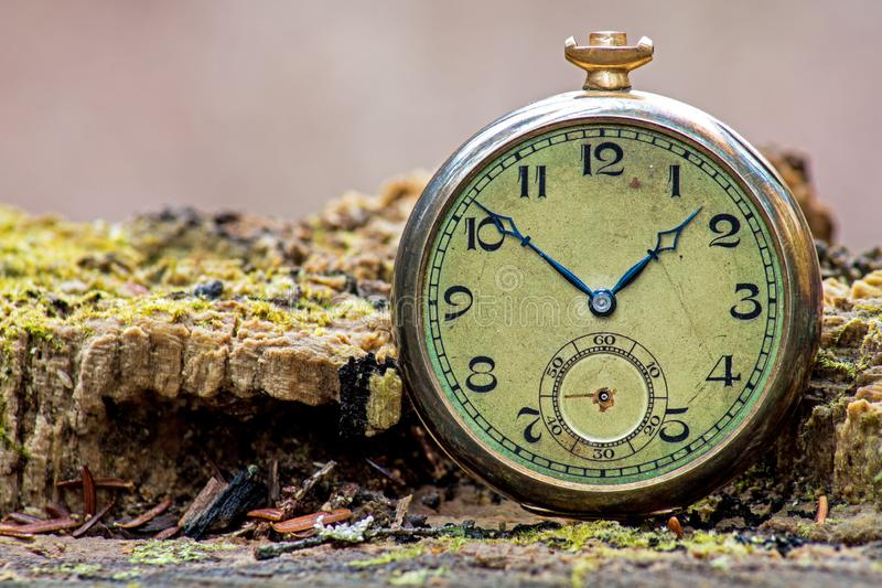 Telling Time In The Forest With An Antique Pocket Watch stock image