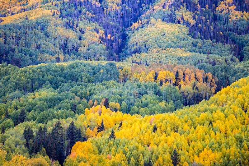 Telururo Colorado imagenes de archivo