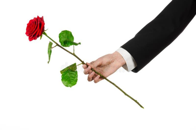Tema del día de tarjeta del día de San Valentín y del día de las mujeres: la mano del hombre en un traje que sostiene una rosa ro foto de archivo libre de regalías