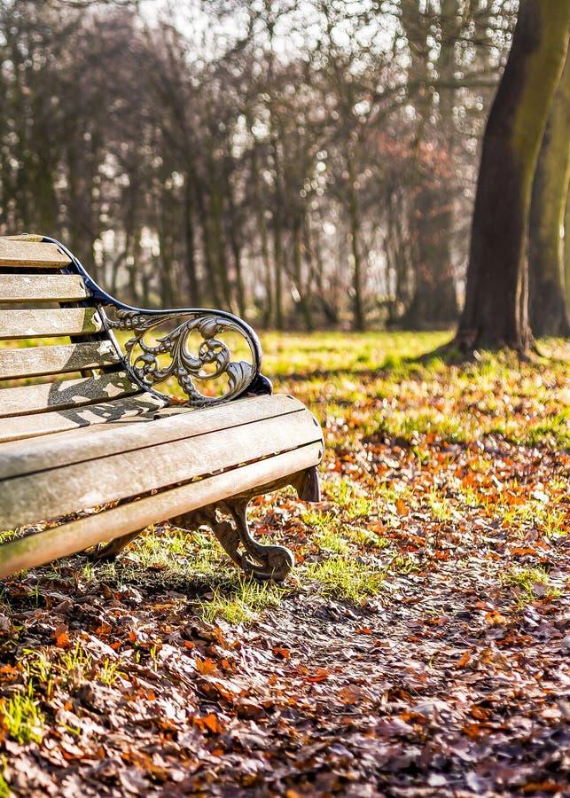 Tema del parco di autunno con il banco fotografia stock