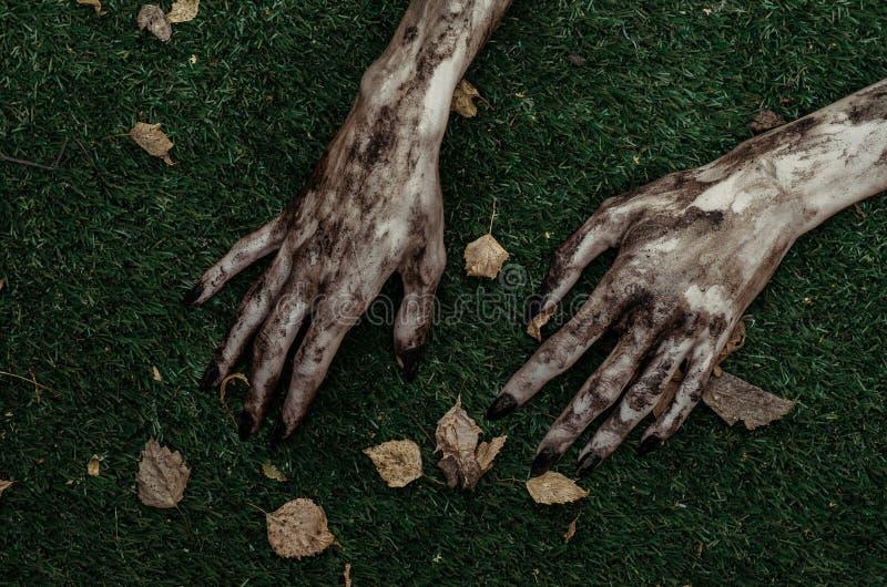 Tema do horror e do Dia das Bruxas: As mãos terríveis do zombi sujas com pregos pretos encontram-se na grama verde, o apocalipse  foto de stock royalty free